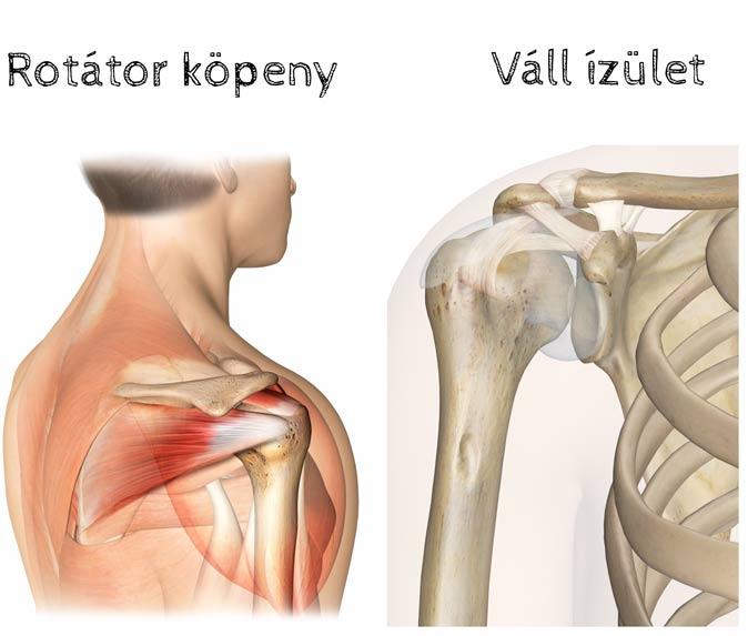 mi fáj a vállízületeket bokaízület ízületi kezelése fizioterápiás kezelés