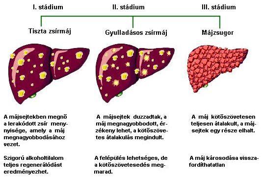 ESR (Erythrocyte sedimentation rate, ESR)