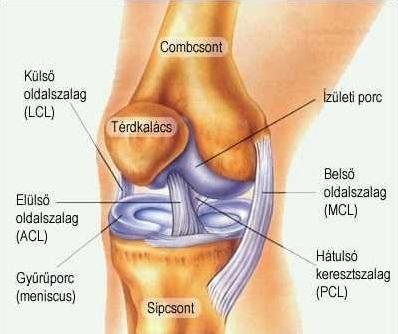 bilaterális 3. fokú térdízület a kar ízületének gyulladása