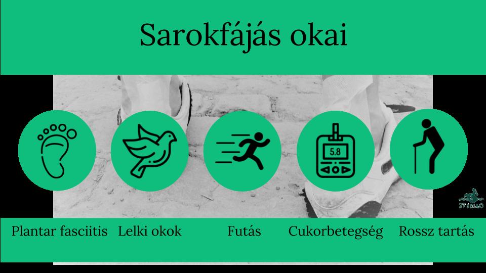 porcszövet betegség cseh kenőcsök ízületekhez