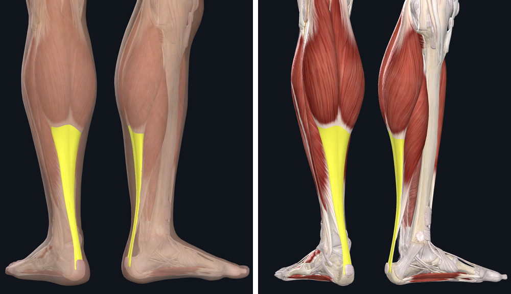 hogyan lehet gyógyítani a lábízületek fájdalmát