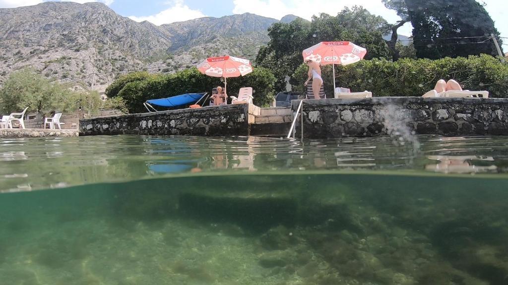 A 10 legjobb magánszoba Montenegróban | rozsakert-egervar.hu