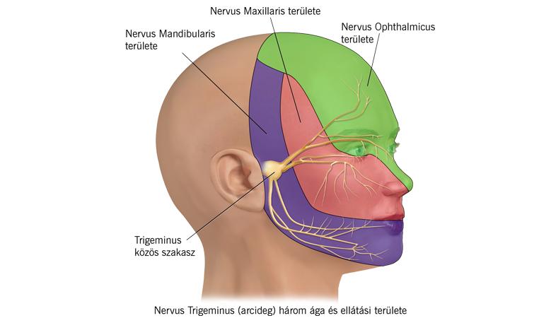 lábfájdalom neuralgia)