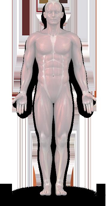 váll-inak javítása forró kulcs kezelés az artrózisban