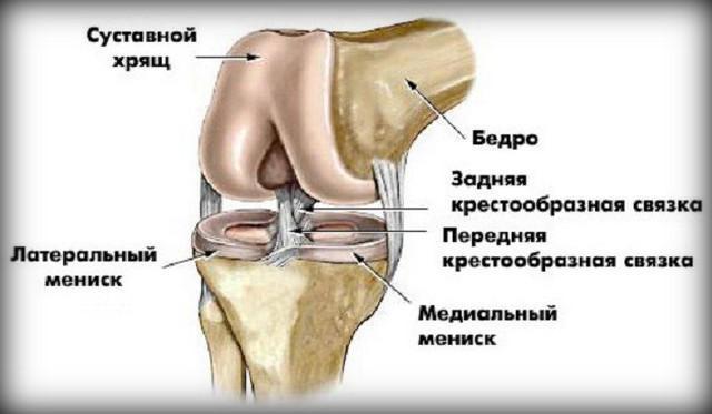 ízületi fájdalomfertőzések
