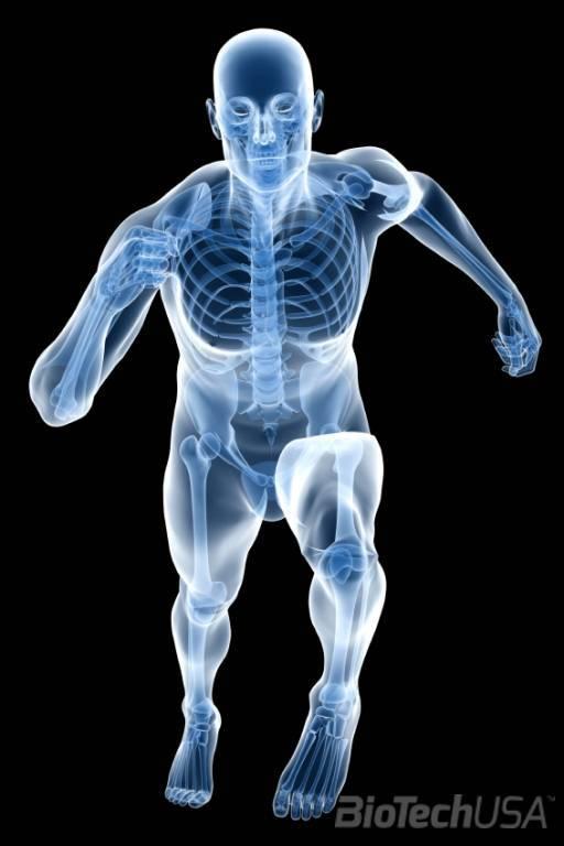 Ízületi mozgékonysági vizsgálatok | CrossBody method Pilates és Gyógytorna központ