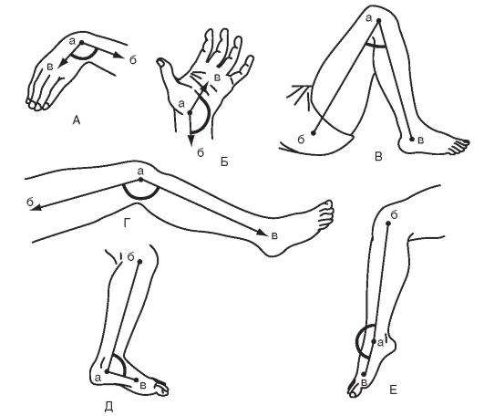 ízületi gyulladás esetén a térdízület amplitúdójának mérése)