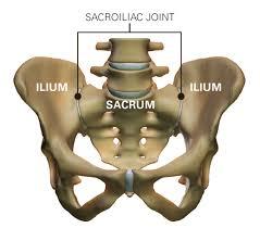 sacroiliac ízületek