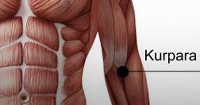 a jobb vállízület osteoarthrosis kezelése)