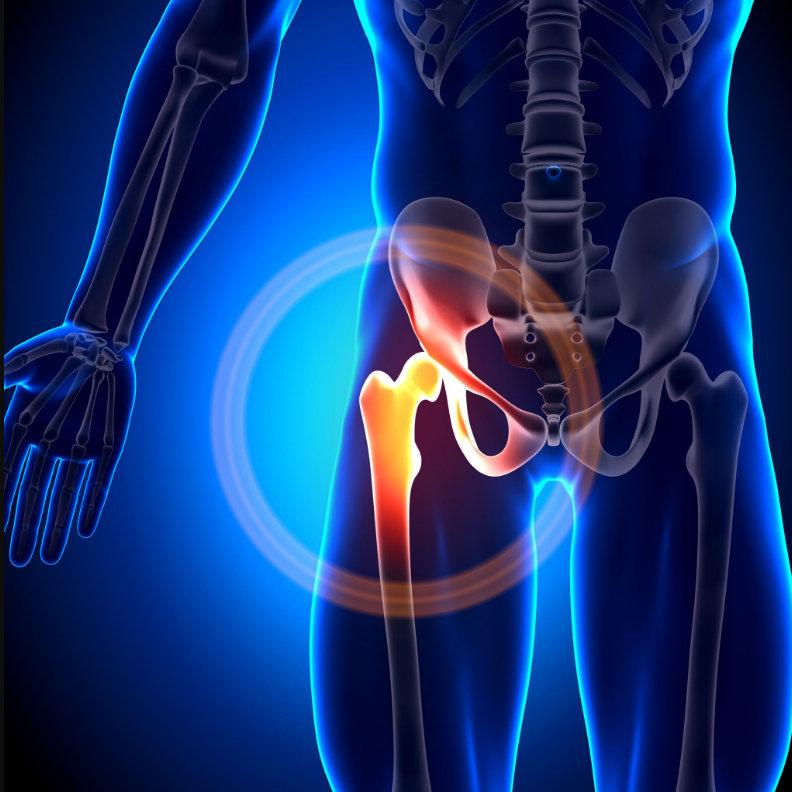 LIPOGEMS® őssejtterápiás kezelés | rozsakert-egervar.huán István ortopéd sebész praxisa