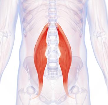 ropogás és fájdalom a test minden ízületében fájdalom az összes ízület neurológiájában