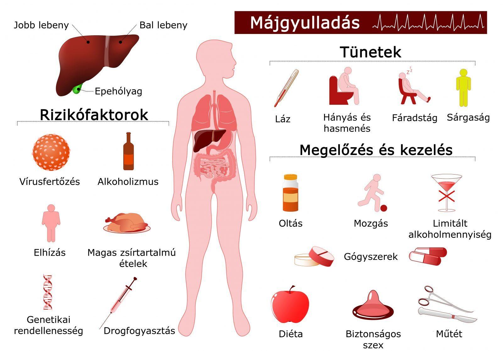 izom- és ízületi fájdalom hepatitis)