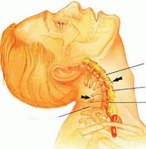 a könyökízület 1. fokozatának osteochondrosis plazma injekciók ízületi fájdalmakból