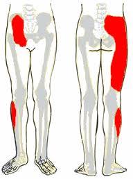 sacroiliac ízületi sérülés