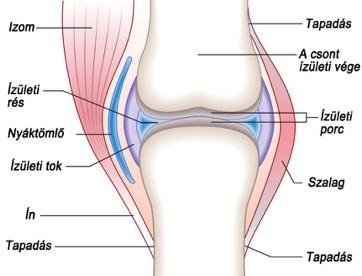 infravörös lámpák artrózis kezelésére)