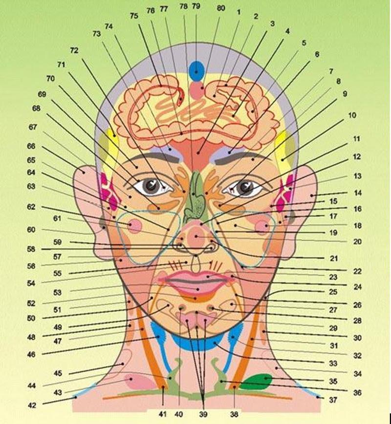 A plantar fasciitis: a plantar fascia okai, tünetei és kezelése