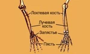 az ujjak ízületei megsérülnek a rakománytól
