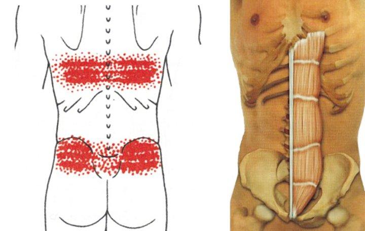 együttes kezelés rizs kása szimmetrikus fájdalom a csípőízületekben