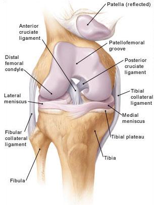 3 fokos térdízületi kezelés)