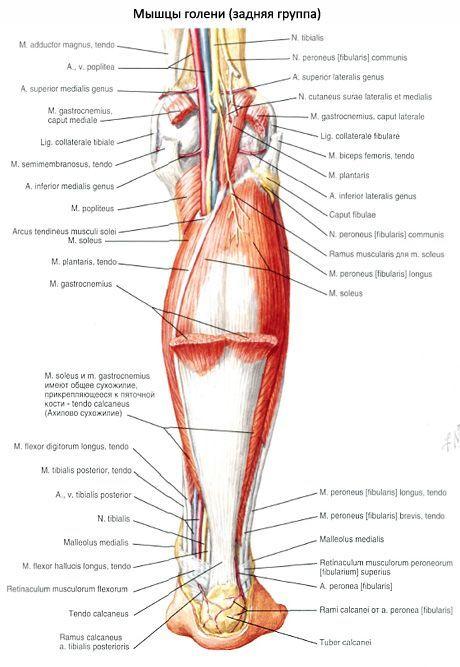 térdízület ízületi fájdalma csípő fájdalomcsillapító tabletták