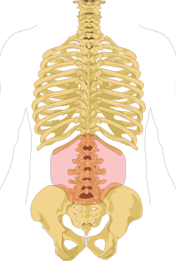 fájdalom a csípőízületben, gerinc oszteokondrozisával