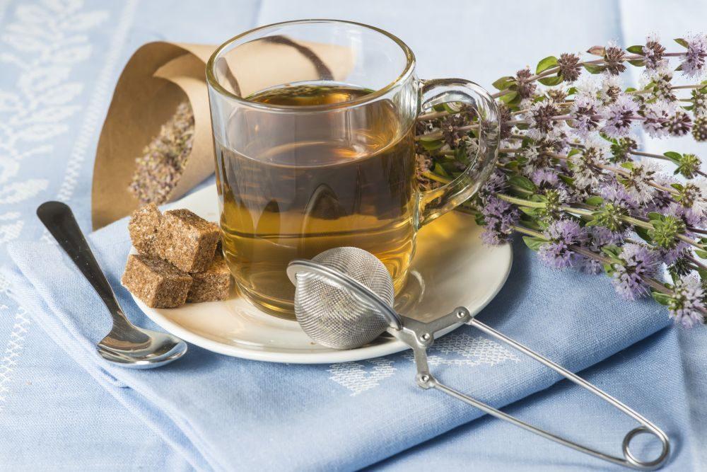 A népgyógyászat folyékony gyógyszerei: a teák