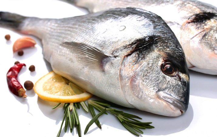 készítmény halak ízületeire