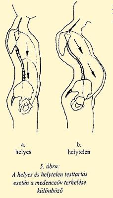 ízületi és gerincbetegségek gyógyszerei