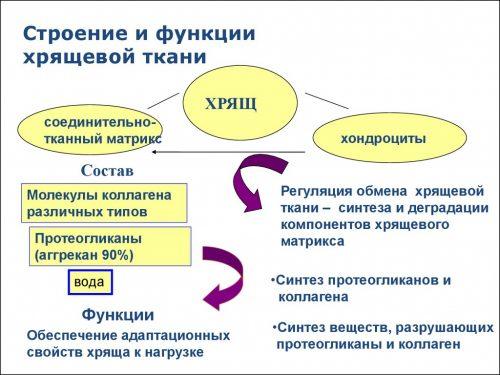 lábízületek artrózisának kezelésére szolgáló gyógyszerek)