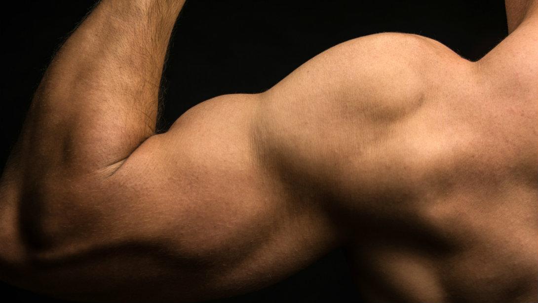 váll fájdalom edzés közben