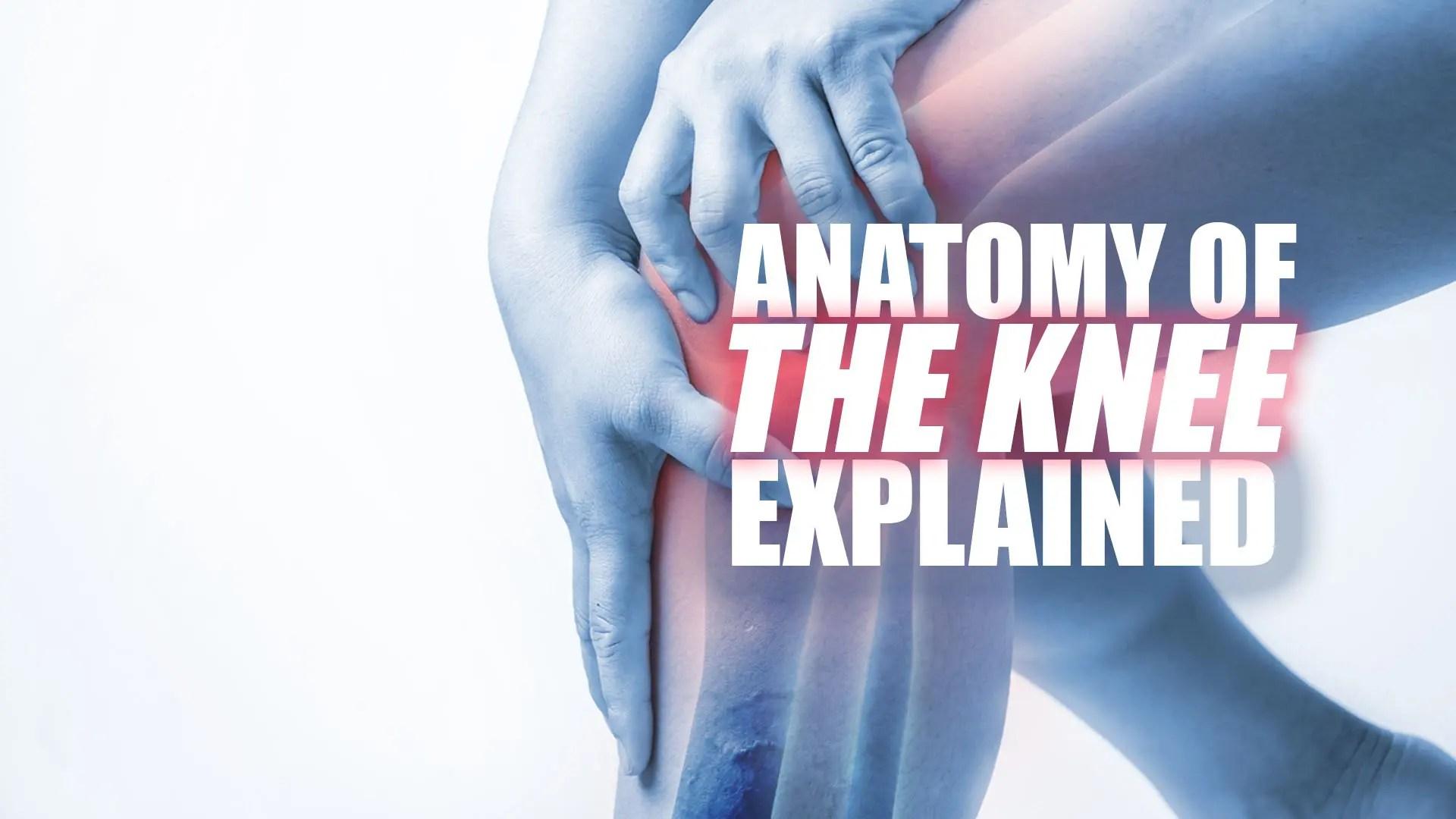 fájdalom a csípőízületben futás után lábfej lábujjai ízületi ízületi gyulladása