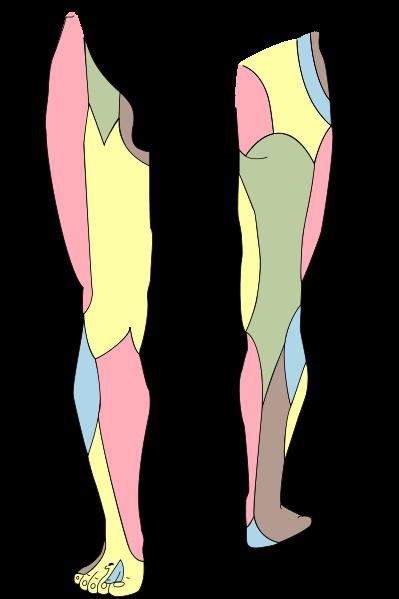 paresthesia és ízületi fájdalmak)