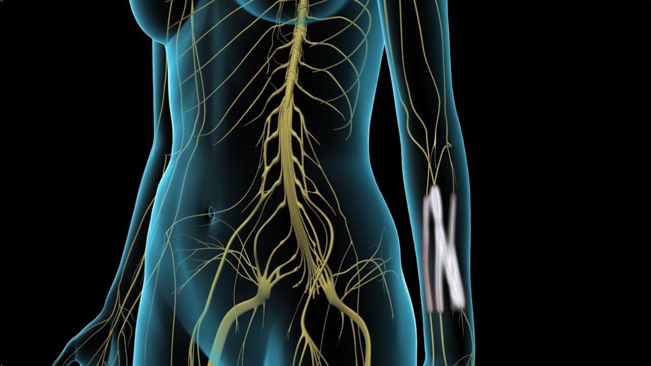 arthrosis kezelés stroginóban