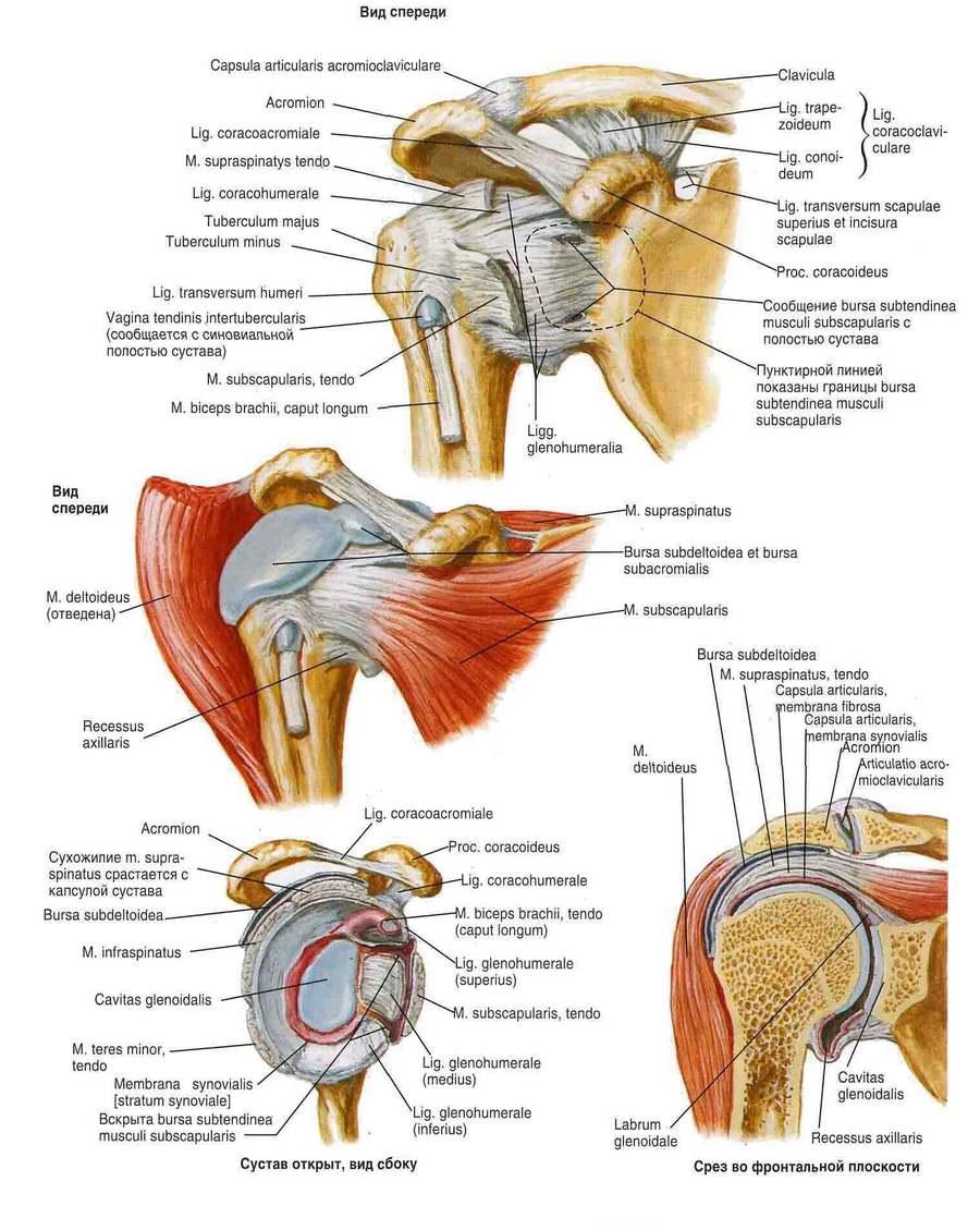 a könyökízület bursitis-kezelése diprospan-nal ízületi betegségek és gombák