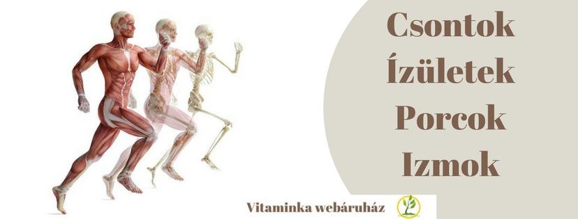 A csontrákról általában
