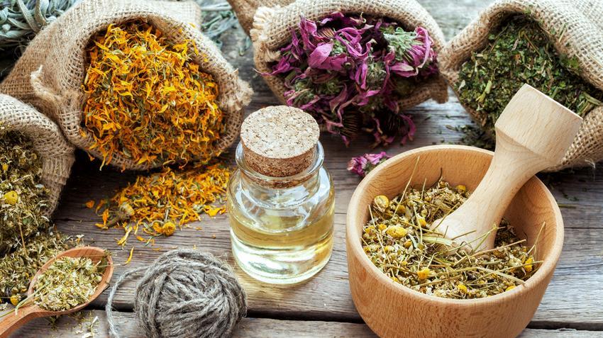 gyógynövények gerinc és ízületek kezelésére