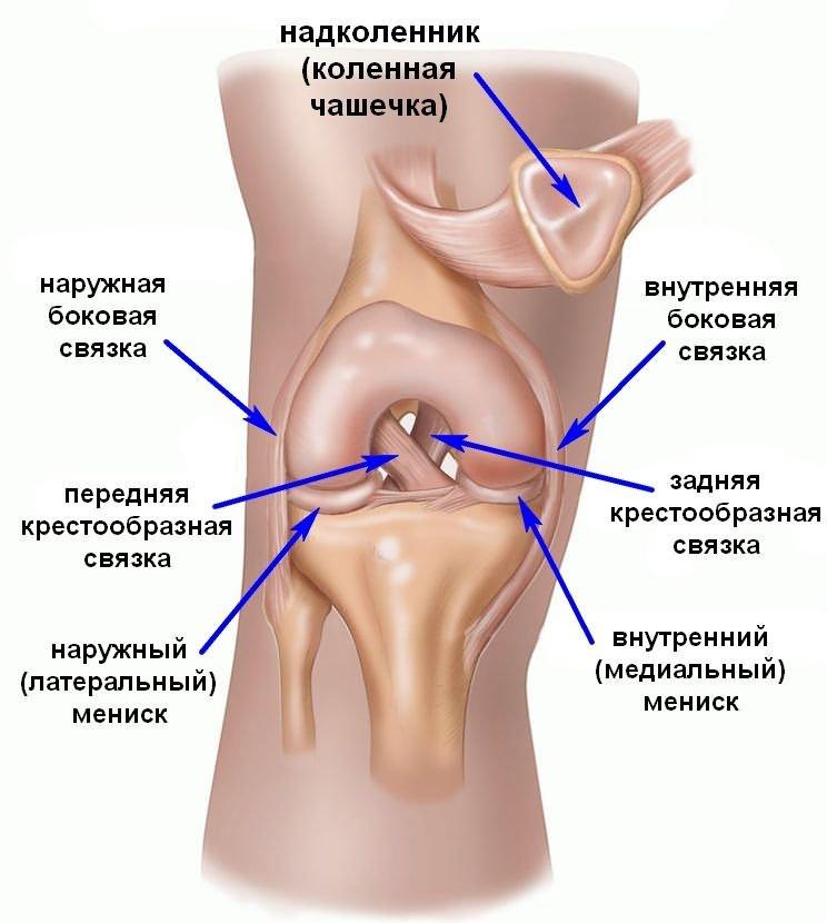 a térdízület kezelésének keresztezett ligamentumainak sérülése