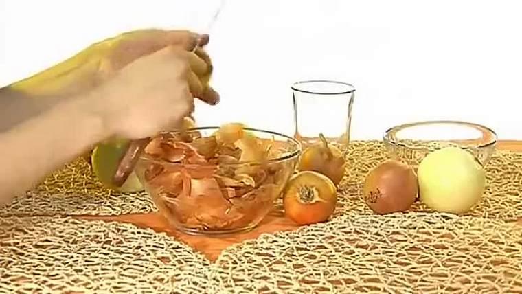 Mi a helyzet a hagymahéj főzetével? A hagyma héja, mint műtrágya a kertben