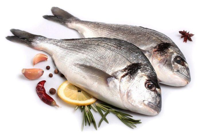 halak ízületi betegségek esetén