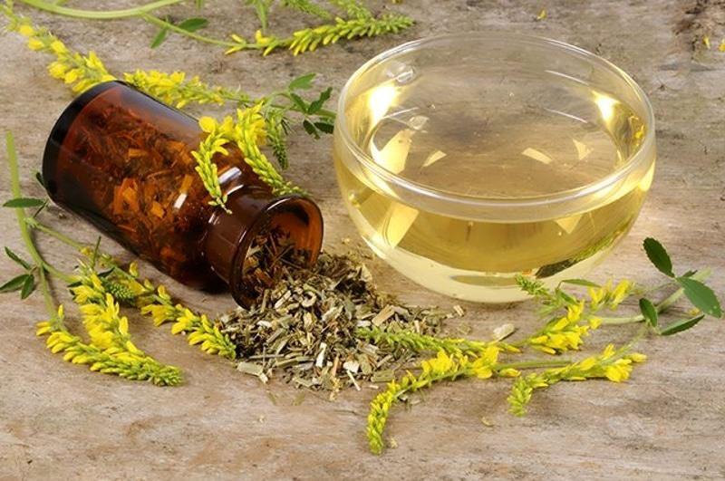Szépia - hogyan kell szedni? Homeopátiás kezelés Sepia-val: Használati jelzések