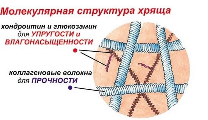 mi a jobb teraflex vagy glükozamin-kondroitin komplex hogyan kezeljük a fájó könyökízületeket